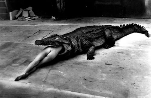 helmut newton alligator Old Blonde Gets Fucked In The Changing Room mature mature porn granny old ...