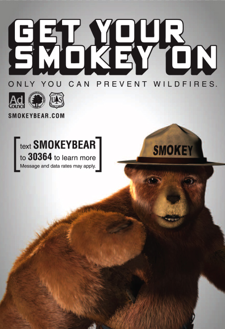 external image smokey_the_bear.jpg