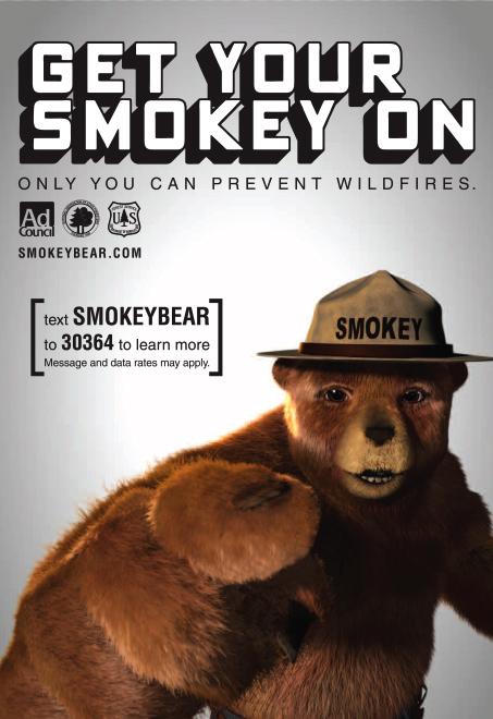 external image smokey_the_bear.jpg