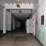 tala_hallway_blue