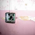 tala_pink_dead_wire
